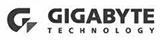 gigabytebw